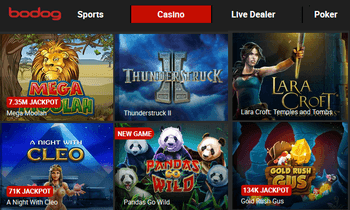 Bodog's casino games - no download required