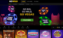 Go Wild Casino website