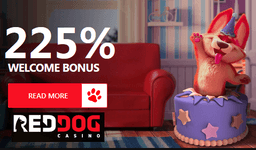 Red Dog Casino welcome bonus