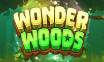 Wonder Woods slot game